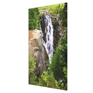 Waterfall in Mount Rainier National Park Gallery Wrapped Canvas