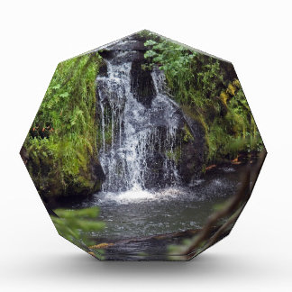 Waterfall in Oregon Award