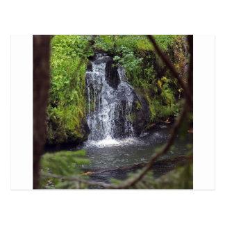 Waterfall in Oregon Postcards