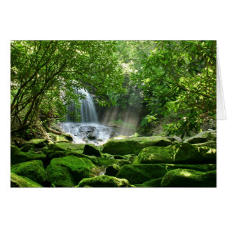 Waterfall in Rain Forest Card