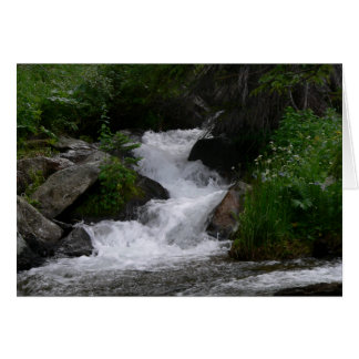 Waterfall in Rocky Mountain National park Cards
