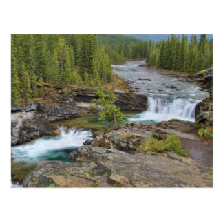 Waterfall In The Canadian Rocky Mountains Postcard