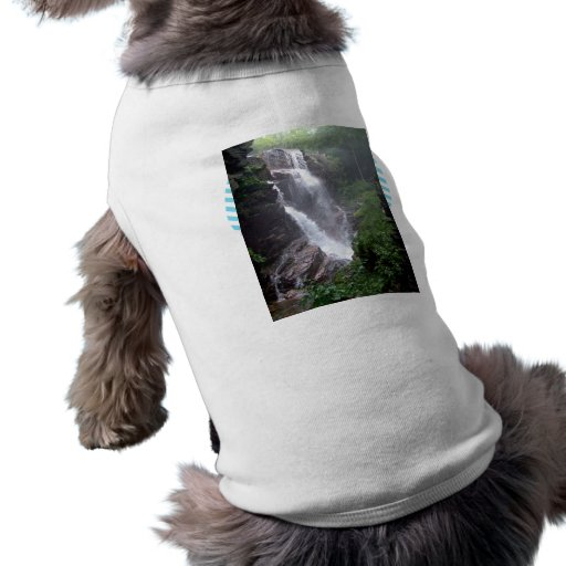 Waterfall in the forest dog clothes