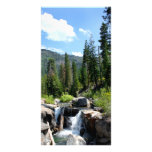 Waterfall in the Forest Photo Card