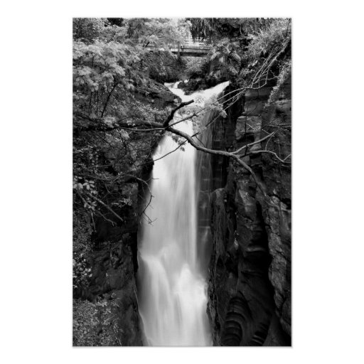 Waterfall in the Rainforest Poster