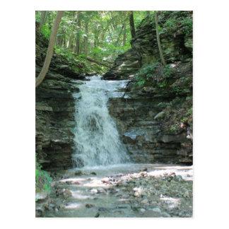 Waterfall in Woods Postcard