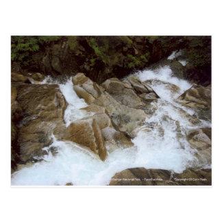 Waterfall Looking Down Mt Rainier National Park Postcards