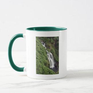 Waterfall Near Hilo, Hawaii Mug