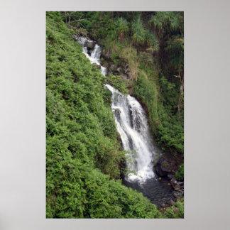 Waterfall Near Hilo, Hawaii Poster