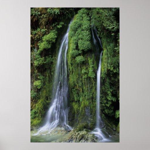Waterfall - Oakridge, OR Poster