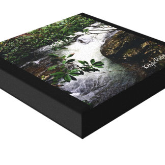 Waterfall of Little Snowbird Canvas Print