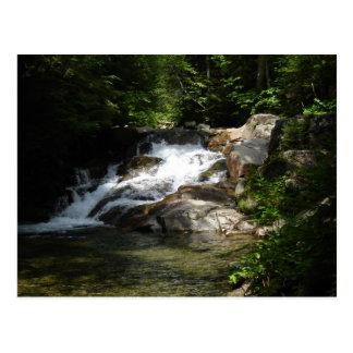 Waterfall on the Pemigewasset Postcard