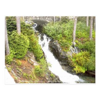 Waterfall Paradise Area Mt Rainier National Park Postcard