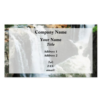 Waterfall Paterson NJ Double-Sided Standard Business Cards (Pack Of 100)