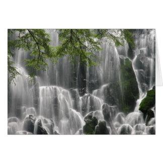 waterfall_photography_ 5 felicitacion
