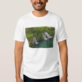 Waterfall, Plitvice Lakes National Park and Tee Shirt