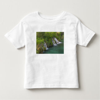 Waterfall, Plitvice Lakes National Park and Tshirt