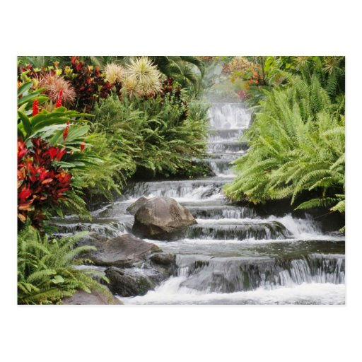 Waterfall Post Cards