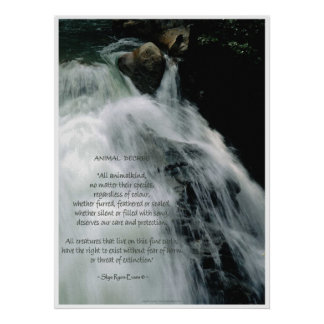 Waterfall Poster & Wildlife Conservation Poem