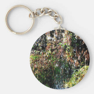 Waterfall products basic round button keychain