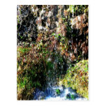 Waterfall products postcard