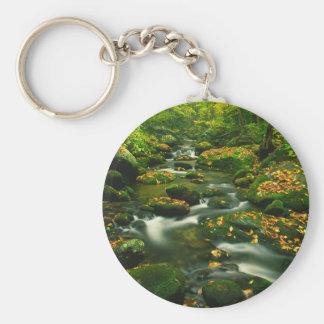 Waterfall Roaring Fork Smoky Mountian Keychain