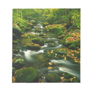 Waterfall Roaring Fork Smoky Mountian Memo Notepads