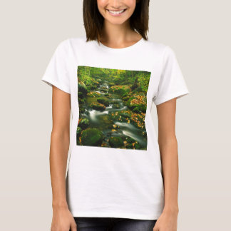 Waterfall Roaring Fork Smoky Mountian T-Shirt
