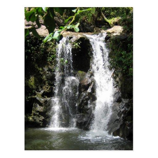 Waterfall Scenes Postcard