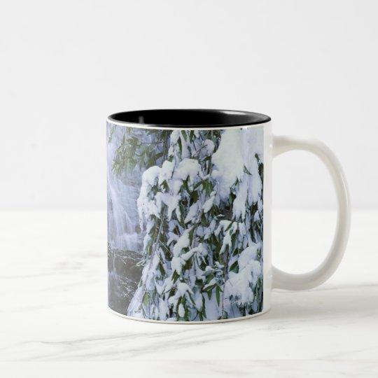 Waterfall, Sequoia and Kings Canyon National Two-Tone Coffee Mug