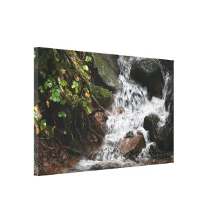 Waterfall Stream Oregon Wilderness Hiking Dream Canvas Print