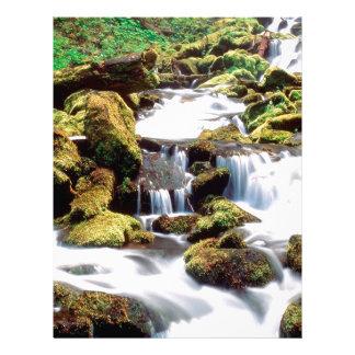 Waterfall Three Sisters Wilderness Willamette Letterhead