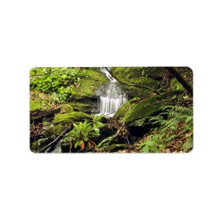 Waterfall through fern trees address label