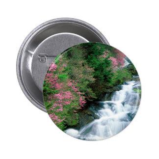 Waterfall Tochigi Prefecture Nikko Japan Button