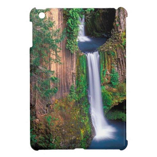 Waterfall Toketee Falls iPad Mini Case