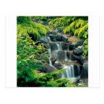 Waterfall Vancouver British Columbia Post Card