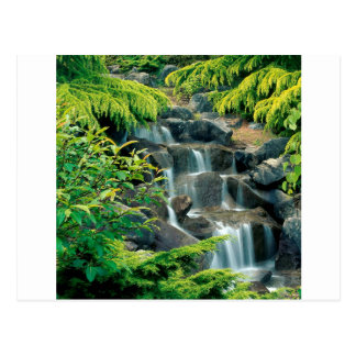 Waterfall Vancouver British Columbia Postcard