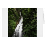 Waterfall White Flowing Torrent Cards