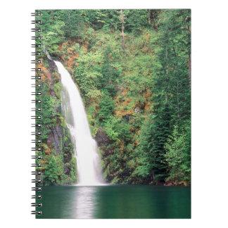 Waterfall Willamette Journals