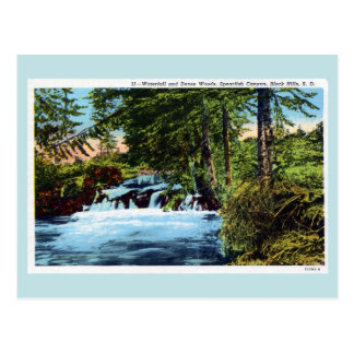 Waterfall, woods, Spearfish Canyon, Black Hills SD Post Cards