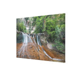 Waterfall, Zion National Park, Utah, USA Canvas Print
