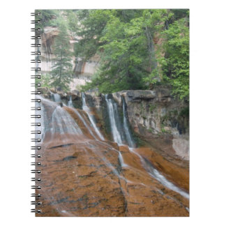 Waterfall, Zion National Park, Utah, USA Notebook