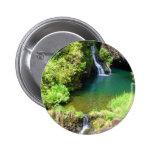 Waterfalls along the Road to Hana, Maui, Hawaii Pinback Button