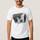 Waterfalls Coming Out Of A Rock Cliff Shirt