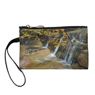 Waterfalls in New Hampshire Change Purses