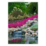 Waterfalls in rock garden greeting cards