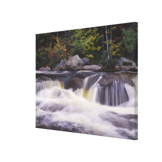 Waterfalls, Kancamagus Highway, White Canvas Print