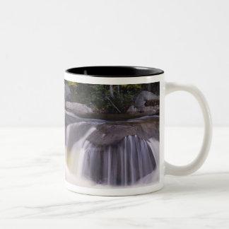 Waterfalls, Kancamagus Highway, White Two-Tone Coffee Mug