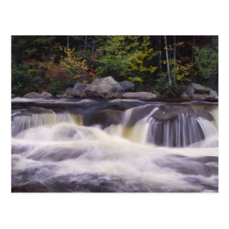 Waterfalls, Kancamagus Highway, White Postcard