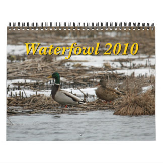 Waterfowl 2010 Calendar